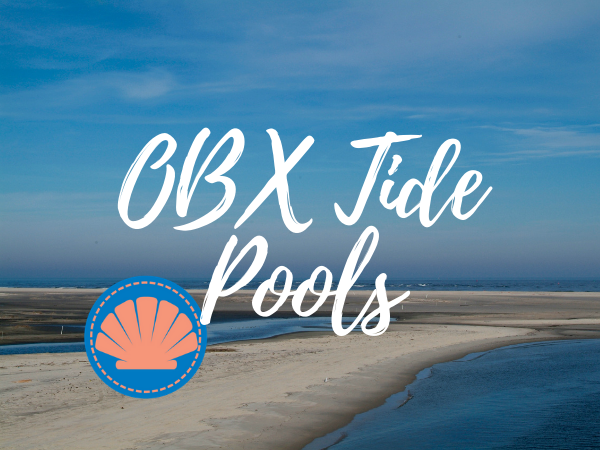 Outer Banks Tidal Pools