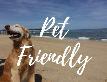 Pet Friendly Rentals